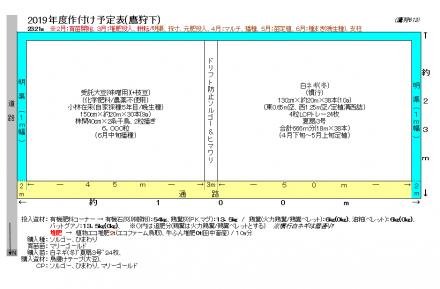Takagarishita2019