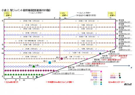Oguraue2020